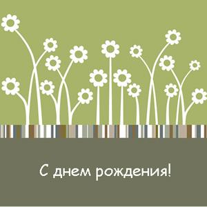 Скачать бесплатно открытки: Белые ромашки